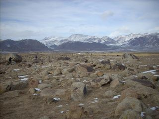 Boulder field with rock art, mountains and house and cattle near Issy-kul